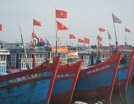 Ngư dân Lý Sơn mở cửa biển đầu năm