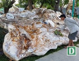 """Ngỡ ngàng những """"tuyệt tác"""" đá nặng hàng chục tấn ở Nha Trang"""