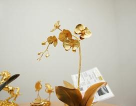 """""""Choáng"""" với chậu lan đúc vàng nguyên khối giá 1 tỷ đồng của đại gia Hà thành"""