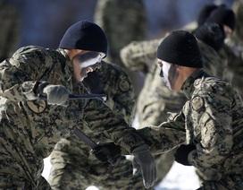 Những điều ít biết về biệt đội sát thủ của Hàn Quốc