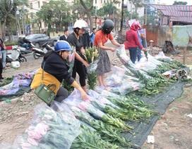 """Hoa ly đổ đống, """"bán rẻ như cho"""" trên vỉa hè Hà Nội sau Tết"""