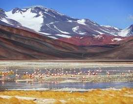 12 bức ảnh quyến rũ bạn đến Argentina