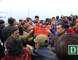 Hàng vạn người dự Lễ phóng sinh,  hơn 5 tấn cá được thả xuống sông Hồng
