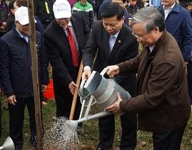 60.000 cây xanh được trồng sau lễ phát động Tết trồng cây ở Bắc Ninh