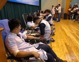 Ngày Thầy thuốc Việt Nam, hàng trăm bác sĩ hiến máu vì người bệnh