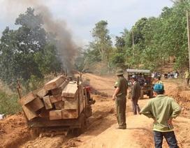 Bắt giữ nhiều xe máy cày chở hàng chục khối gỗ lậu