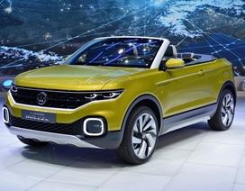 Volkswagen sẽ làm crossover mui trần