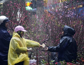 Bắc Bộ chuẩn bị đón đợt rét đậm kèm mưa