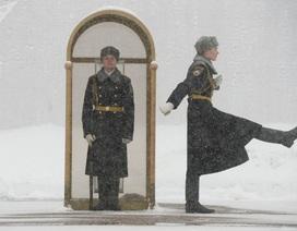 """Moscow """"quay cuồng"""" trong bão tuyết thế kỷ"""
