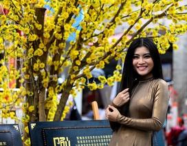 Thiếu nữ Sài Gòn thướt tha tà áo dài xuống phố ông Đồ