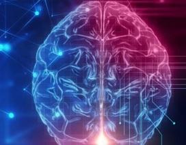 Tăng trí nhớ bằng cách sốc điện cho não