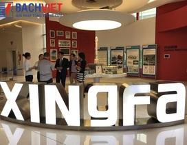 Bách Việt Group – Lựa chọn đáng tin cậy khi mua cửa nhôm Xingfa