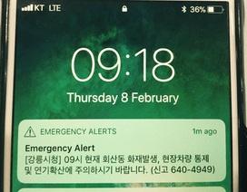 Khán giả dự Thế vận hội Hàn Quốc hoảng hốt nhận tin báo khẩn