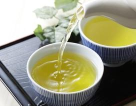 Tiết lộ mối liên hệ của trà nóng với căn bệnh nguy hiểm