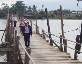 Học sinh Nha Trang háo hức qua sông trên cầu gỗ 2 lần bị lũ cuốn
