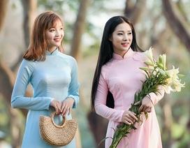 """Thiếu nữ Hà Nội khoe sắc rạng ngời bên """"loài hoa tháng Tư Hà Nội"""""""