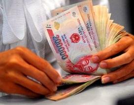Lao động trình độ đại học thu nhập bình quân đạt 7,74 triệu đồng