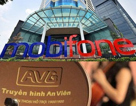 Thương vụ Mobifone mua AVG vi phạm nghiêm trọng các tiêu chuẩn thẩm định giá