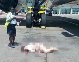 Tiếp viên hàng không nguy kịch vì rơi từ cửa máy bay xuống đất