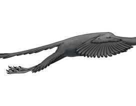Khủng long Archaeopteryx bay giống chim trĩ
