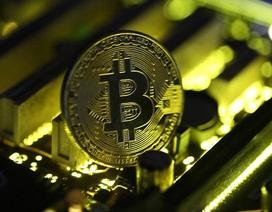 """Tin xấu cho """"thợ mỏ"""" tiền ảo: Bitcoin đã không còn lợi nhuận"""