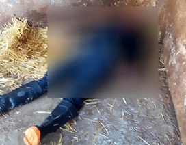 Nhân viên sở thú Mexico bị sư tử vồ chết vì quên khóa chuồng cẩn thận