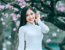 Nữ sinh Hà thành ngọt ngào bên sắc hoa ban