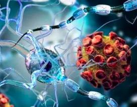 Điều trị tế bào gốc mang lại hy vọng mới cho bệnh nhân đa xơ cứng