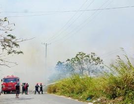 Bãi cỏ giữa khu dân cư cháy lớn, người dân hoảng hốt