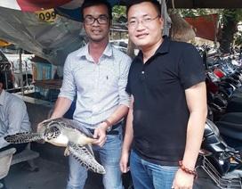 Bỏ tiền mua lại rùa biển quý hiếm nặng 10kg để thả về biển
