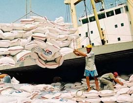 Doanh nghiệp đang tồn hơn 651.000 tấn gạo trong kho