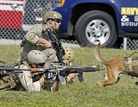 Những lực lượng đặc nhiệm tinh nhuệ nhất của Mỹ