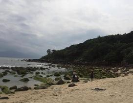"""Chủ tịch Đà Nẵng """"chốt"""" vụ dự án bít lối xuống biển"""