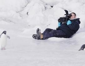 """Thú vị với phim hướng dẫn an toàn bay """"Mát lạnh nhất thế giới"""""""