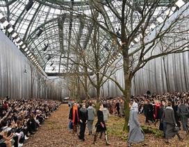 Show diễn thời trang giữa khu rừng