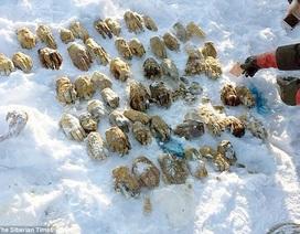 Kinh hoàng phát hiện hơn 50 bàn tay người trong chiếc túi ở Nga