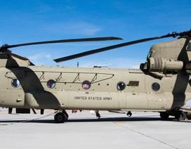 """Cận cảnh siêu trực thăng """"Ngựa thồ"""" uy lực của Mỹ"""