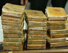Biên phòng bắt giữ đối tượng vận chuyển 20 bánh heroin