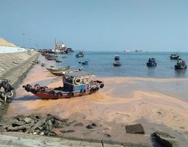 Dải nước màu đỏ dọc bờ biển Quảng Bình có thể do trứng khuyếc