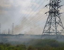 """Cháy bãi cỏ, đường dây điện 500kv khu vực Nam Sài Gòn bị """"uy hiếp"""""""