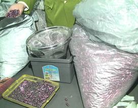 """Cơ sở sản xuất """"thuốc"""" hỗ trợ ung thư từ than tre được triệt phá như thế nào?"""