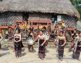 Phục dựng lễ hội truyền thống của đồng bào người Cơtu tại Đà Nẵng