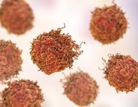 """""""Thuốc trừ sâu tự nhiên"""" giết chết tế bào ung thư tuyến tiền liệt"""