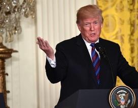 """Tổng thống Trump nói cuộc không kích vào Syria thành công """"hoàn hảo"""""""