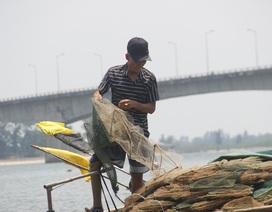 """Những """"kỳ nhân"""" làng biển: Mất một chân vẫn bám biển mưu sinh"""