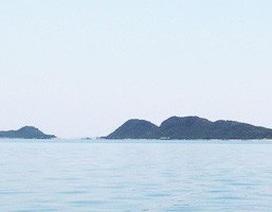 Ồ ạt phá rừng trên các đảo ở Bắc Vân Phong khi khu vực sắp thành đặc khu kinh tế