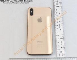 Hé lộ phiên bản Blush Gold tuyệt đẹp của iPhone X
