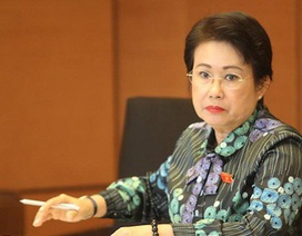 Bà Phan Thị Mỹ Thanh xin thôi làm đại biểu Quốc hội