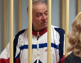 Báo Anh: Xác định được nghi phạm vụ đầu độc cựu điệp viên Nga