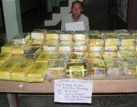 """Bắt """"ông trùm"""" vận chuyển 40kg ma túy dạng """"đá"""", 120.000 viên ma túy trên lằn ranh biên giới"""
